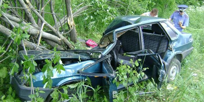 ВОмской области шофёр авто умер, съехав вкювет