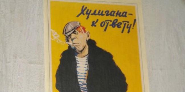 Гражданин Омской области получил полтора года условно заизбиение егеря