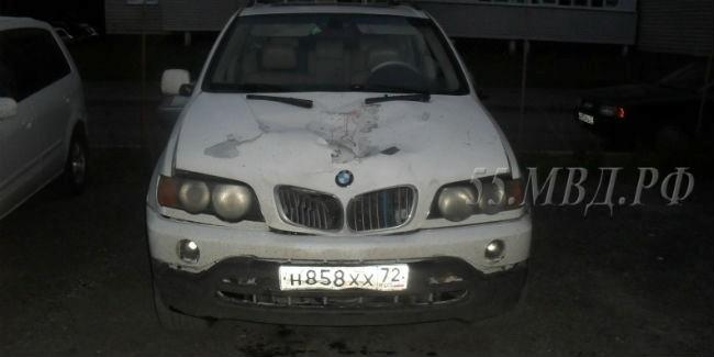 ВОмске шофёр «БМВ Х5» сбил насмерть дорожного рабочего и исчез