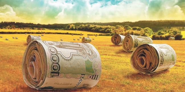 Минсельхоз: открыт прием заявок наполучение новых льготных краткосрочных кредитов