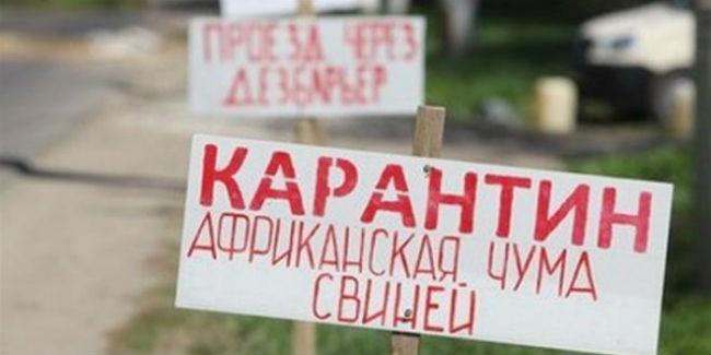 Омским фермерам, пострадавшим отафриканской чумы свиней, заплатят 64,5 млн руб.