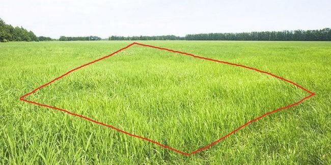 Граждане Прикамья могут получить гектар земли на далеком Востоке через МФЦ