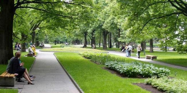 Субсидии наблагоустройство парков хотят получить 5 малых городов Омской области
