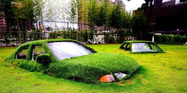 Для Омска закупят газонную траву на700 тыс.