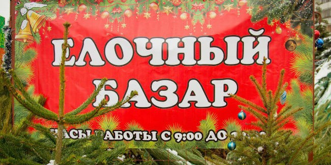 С20декабря в столице России начнут работать 200 елочных базаров