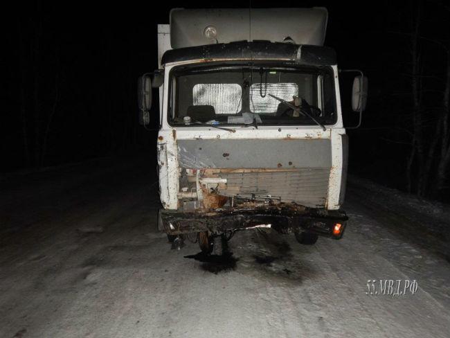 Натрассе Омск-Муромцево в трагедии погибла 21-летняя девушка